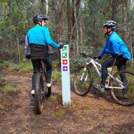Yackandandah Mountain Bike Park Green Shack Loop